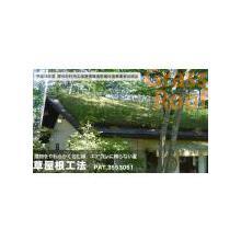 屋上緑化工法 草屋根工法 製品画像