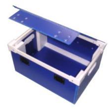 プラダン 片開き固定箱 コンテナ仕様 製品画像