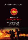 初期消火救命ボール『ELIDE FIRE BALL(エライドファイヤーボール)』 表紙画像