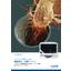 細胞遊⾛・浸潤⽤タイムラプス⽣細胞解析システム『IncuCyte』アッセイ詳細カ タログ 表紙画像