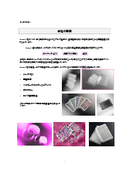 biomat社 製品カタログ 表紙画像