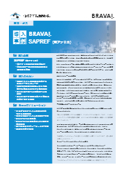 【Brava海外導入事例】「(南アフリカ)何万もの図面から特定箇所を検索でき、色々なファイル形式に対応するビューアが必要でした」 表紙画像