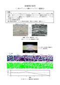 【画像解析事例】二相ステンレス鋼のフェライト量測定