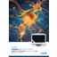 神経動態解析⽤タイムラプス⽣細胞解析システム『IncuCyte』アッセイ詳細カタ ログ 表紙画像