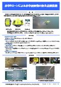 水中ドローンによる水中設置物の保全点検技術 表紙画像
