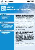 【Brava海外導入事例】「保険会社 × Brava Enterprise:保険申請業務プロセスの効率化を実現」