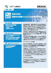 【Brava海外導入事例】「保険会社 × Brava Enterprise:保険申請業務プロセスの効率化を実現」 表紙画像
