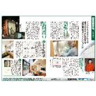 インフルエンザの感染力を低減する『無添加住宅の漆喰』 表紙画像