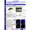 EPMA分析例(チップ抵抗器_47Agと17Clのピーク分離)210825.jpg