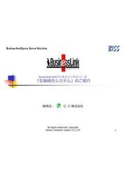 ビジネスリンクシリーズ_生産管理・販売管理システム 表紙画像