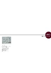 【突板革命】シンノキ プレフィニッシュ突板化粧板 特注家具製作 キッチン Produced by AMAT 表紙画像