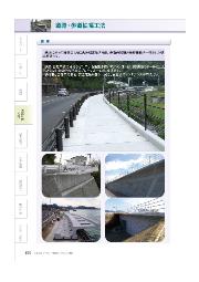 【全国対応可能】張出し歩道『アプロンII』 表紙画像