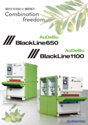バリ取り機『AuDeBu BlackLine1100/650』 表紙画像
