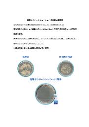 超電水クリーンシュ!シュ!の除菌比較試験 表紙画像