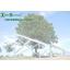 TreeSystem(ツリー・システム)社のご案内 表紙画像