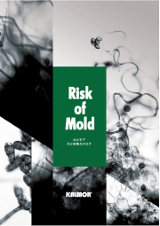 防カビ関連総合カタログ「Risk of mold」 表紙画像