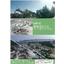 あらゆる建設発生土の有効利用を実現『回転式破砕混合工法』 表紙画像