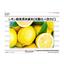 レモン鮮度保持資料(抗酸化+防カビ) 表紙画像