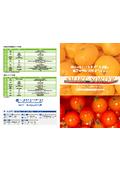 青果物簡易選別システム『SMART-SORTER』