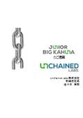 【資料】JUNIOR/Big Kahunaのご提案