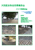 天然記念物自然環境保全 表紙画像