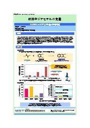 【分析事例】飲料中ジアセチルの定量 表紙画像