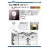 だんじり提灯用LEDランプ.jpg