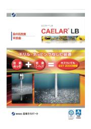 表面処理『カエラー LB』 表紙画像