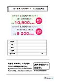 セーフティプラボード FAX注文用紙