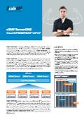 vSMP ServerONE - Virtual SMPを活用するスケールアップ 表紙画像