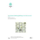 【アプリケーションノート】Nadia Instrumentによる植物プロトプラストppRNA-seq アプリケーション 英語版 表紙画像