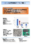 オゾン水生成用導電性ダイヤモンド電極 カタログ