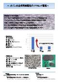 オゾン水生成用導電性ダイヤモンド電極カタログ