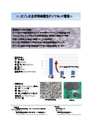 オゾン水生成用導電性ダイヤモンド電極カタログ 表紙画像