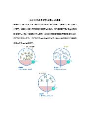【無料進呈中】除菌洗浄剤『超電水クリーンシュ!シュ!』水100%なのに汚れを落とせる理由 表紙画像