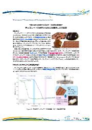 【分析事例】テンパリングしたチョコレートの熱分析・粘弾性測定 表紙画像