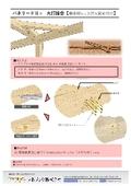 火打のビス留め(カタログ・墨出し) 表紙画像
