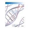 200911食品DNA検査の基礎知識.jpg