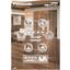 エレベーター 空き家アパートのリノベーションやデイサービス、保育園、介護施設で効果的に採用『パナソニック小型エレベーター』 表紙画像