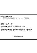 中国市場向けデジタルマーケティング サービス