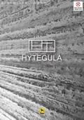 左官×タイルコラボ『HYTEGULA(ハイテグラ)』
