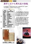 【技術資料】クロノケアSP