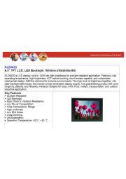 LITEMAX液晶ディスプレイ Spanpixel SSF0635-E  製品カタログ 表紙画像