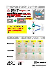 油脂除去による汚れ存在下の除菌エビデンス(ソウジスキー、次亜塩素酸NA、次亜塩素酸水、エタノール) 表紙画像
