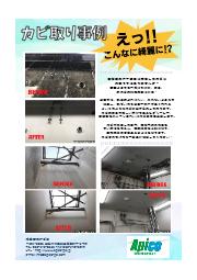 【チラシ】カビ取り工事|アピコ 表紙画像