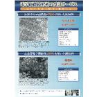 電子顕微鏡解析の受託サービス 表紙画像