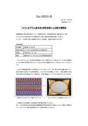 株式会社ナンゴー 3Dステレオグラム立体造形アート 表紙画像