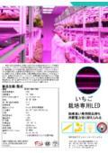 ▽いちご栽培専用LED(カタログ)