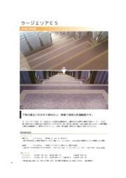 透明防滑樹脂『ラージエリアES』 表紙画像