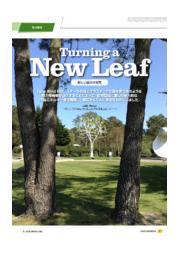 新しい風の木発電  表紙画像
